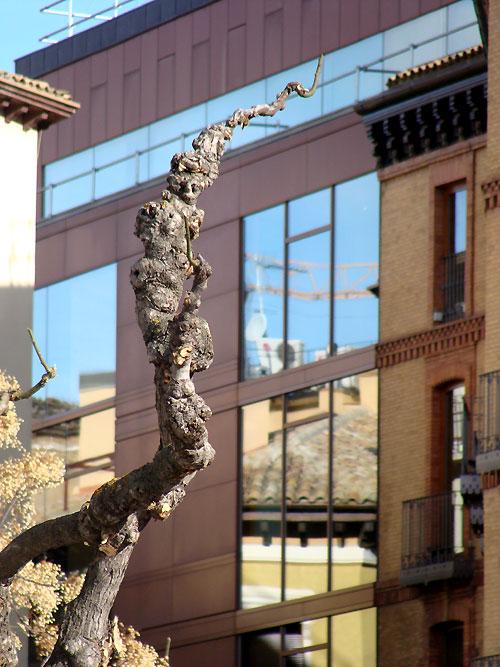 Huesca capital